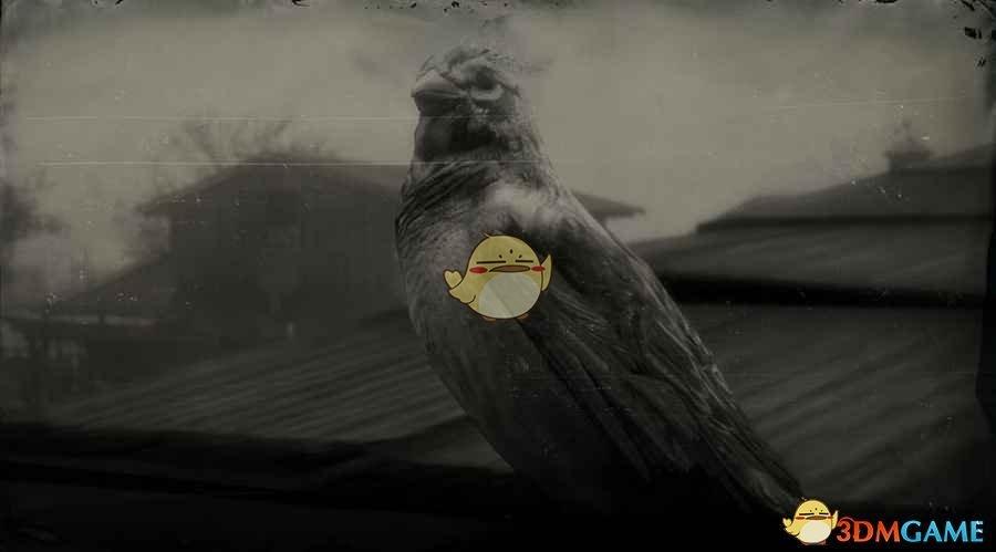 《荒野大镖客2》美洲树雀鹀图鉴一览