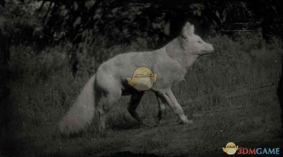 《荒野大镖客2》传说狐图鉴一览