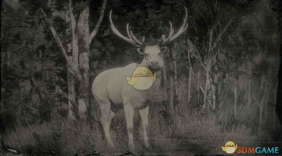 《荒野大镖客2》传说麋鹿图鉴一览