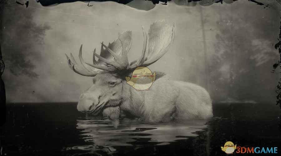 《荒野大镖客2》传说驼鹿图鉴一览