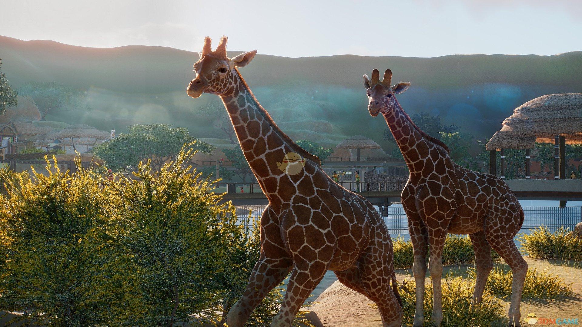 《动物园之星》交易动物小技巧分享