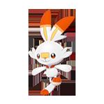 《宝可梦:剑/盾》炎兔儿图鉴