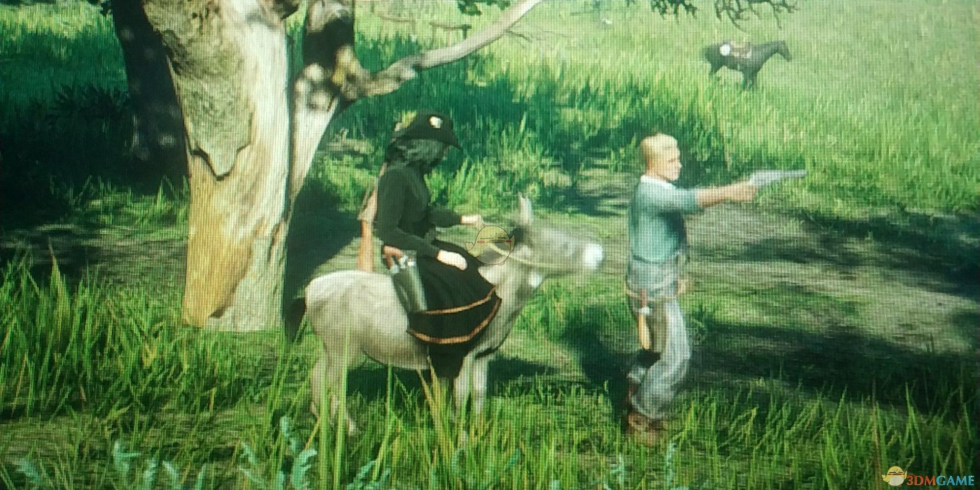 《荒野大镖客2》线上模式毛驴位置介绍