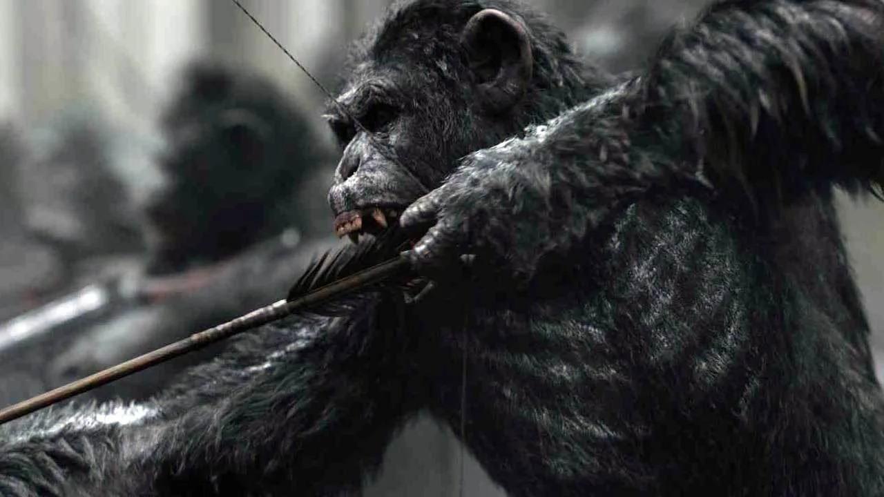《猩球崛起》新作非重启 将讲述凯撒死后故事