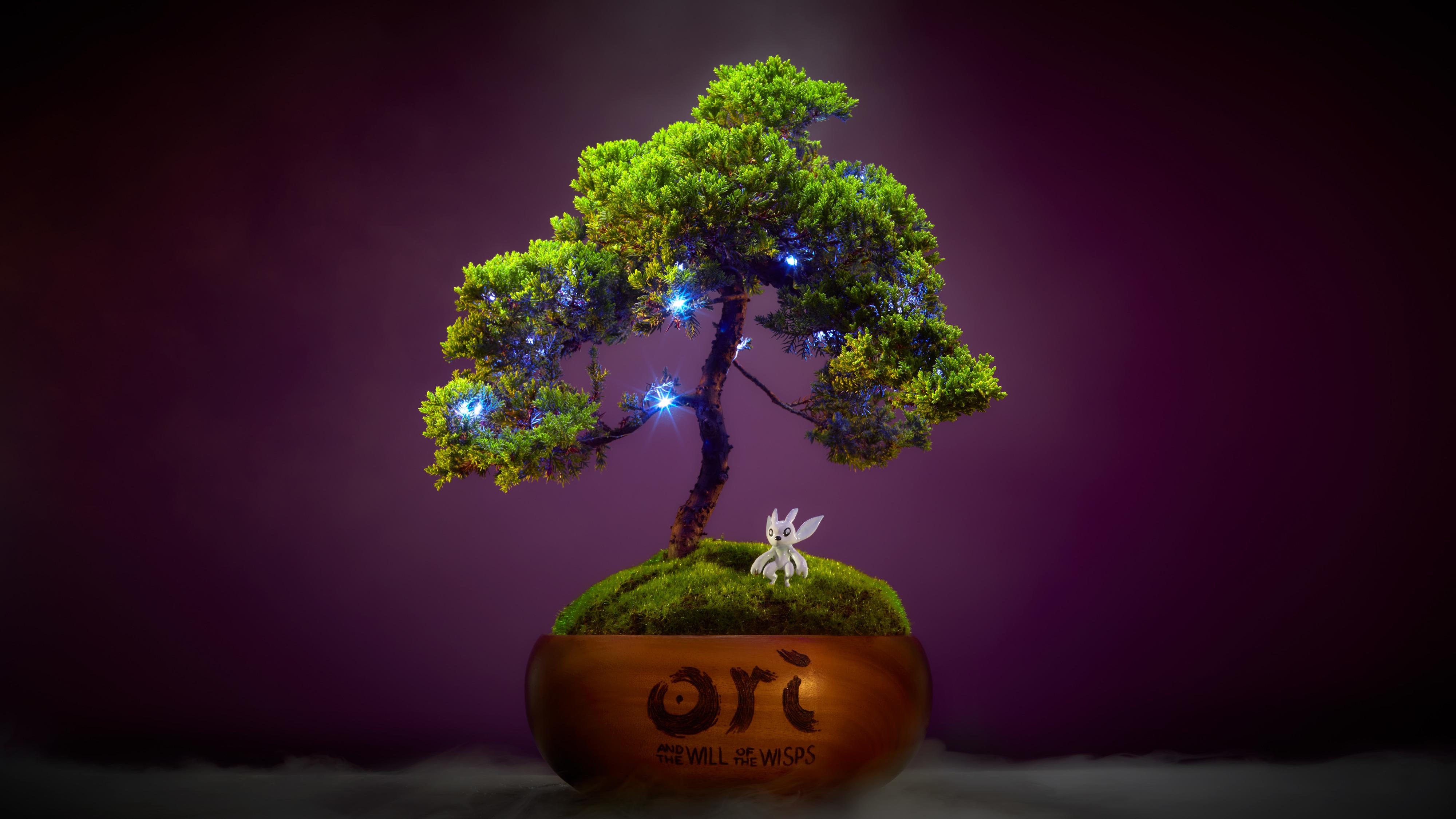 绿意盎然 Xbox推出《奥日与萤火意志》主题纪念盆栽