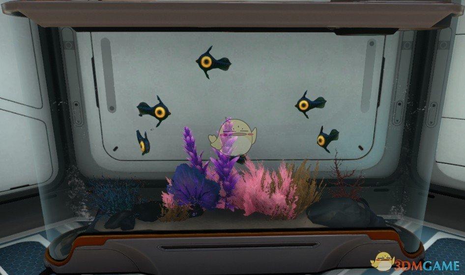 《深海迷航》水族馆鱼可以繁殖MOD