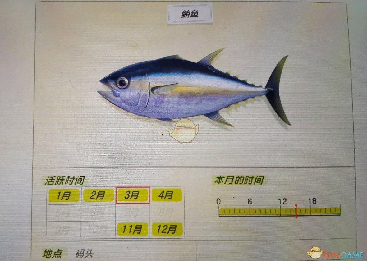 《集合啦!動物森友會》鮪魚活躍月份及活躍地點分享