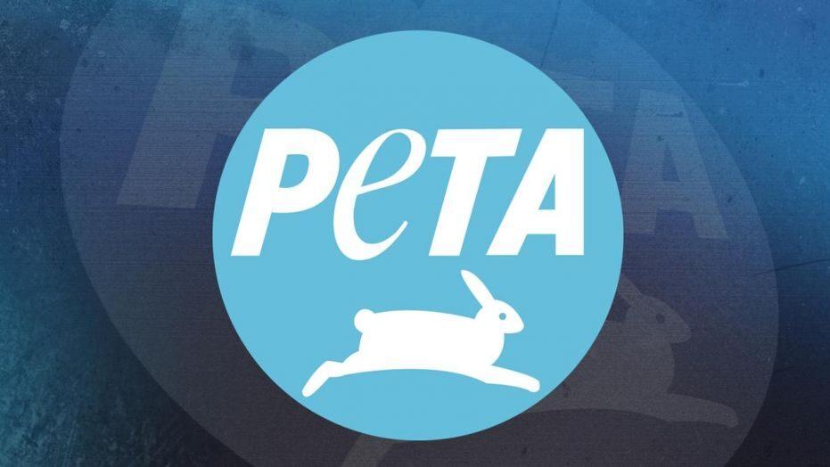 善待动物组织PETA盯上《动森》:素食者只能吃水果