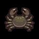 《集合啦!动物森友会》中华绒螯蟹图鉴