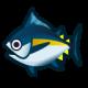《集合啦!动物森友会》鲔鱼图鉴
