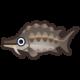 《集合啦!动物森友会》鲟鱼图鉴