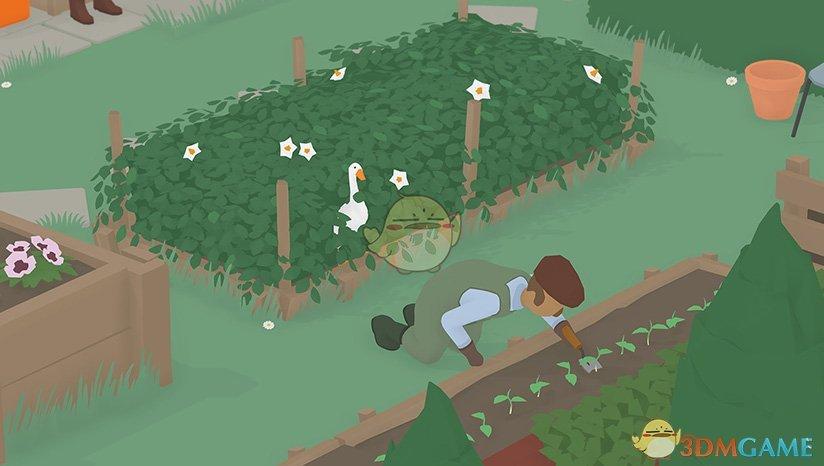 《捣蛋鹅》把园丁锁在花园外任务攻略