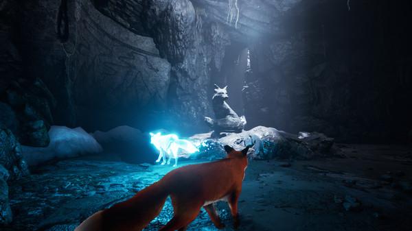 北方之魂/北方之灵/灵狐之魂/红色狐狸 增强版/Spirit of the North插图