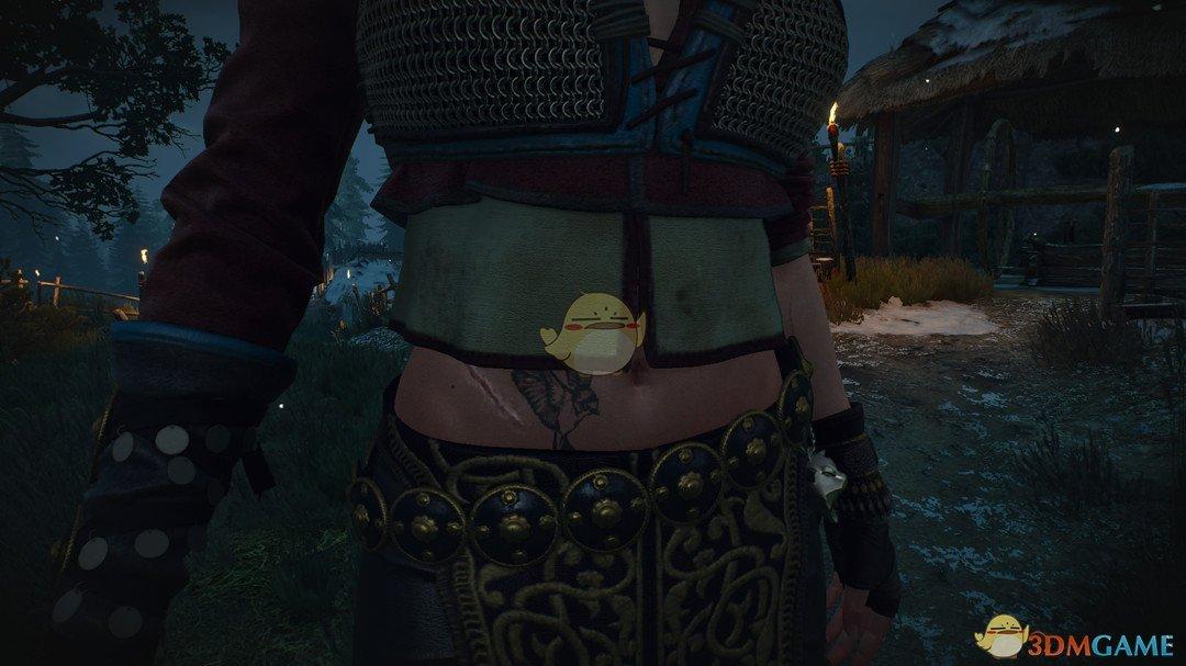 《巫师3:狂猎》希里的燕子纹身MOD