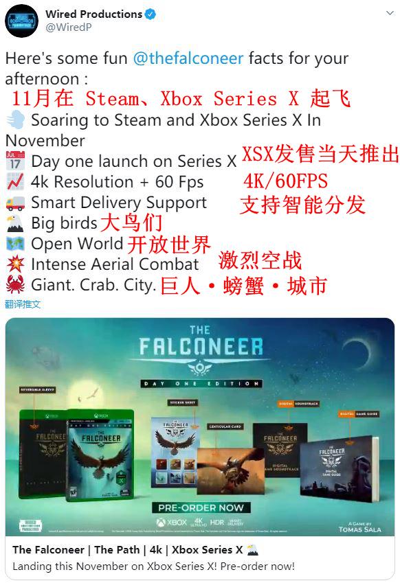 驭鸟空战《猎鹰者》11月登陆Steam、Xbox Series X
