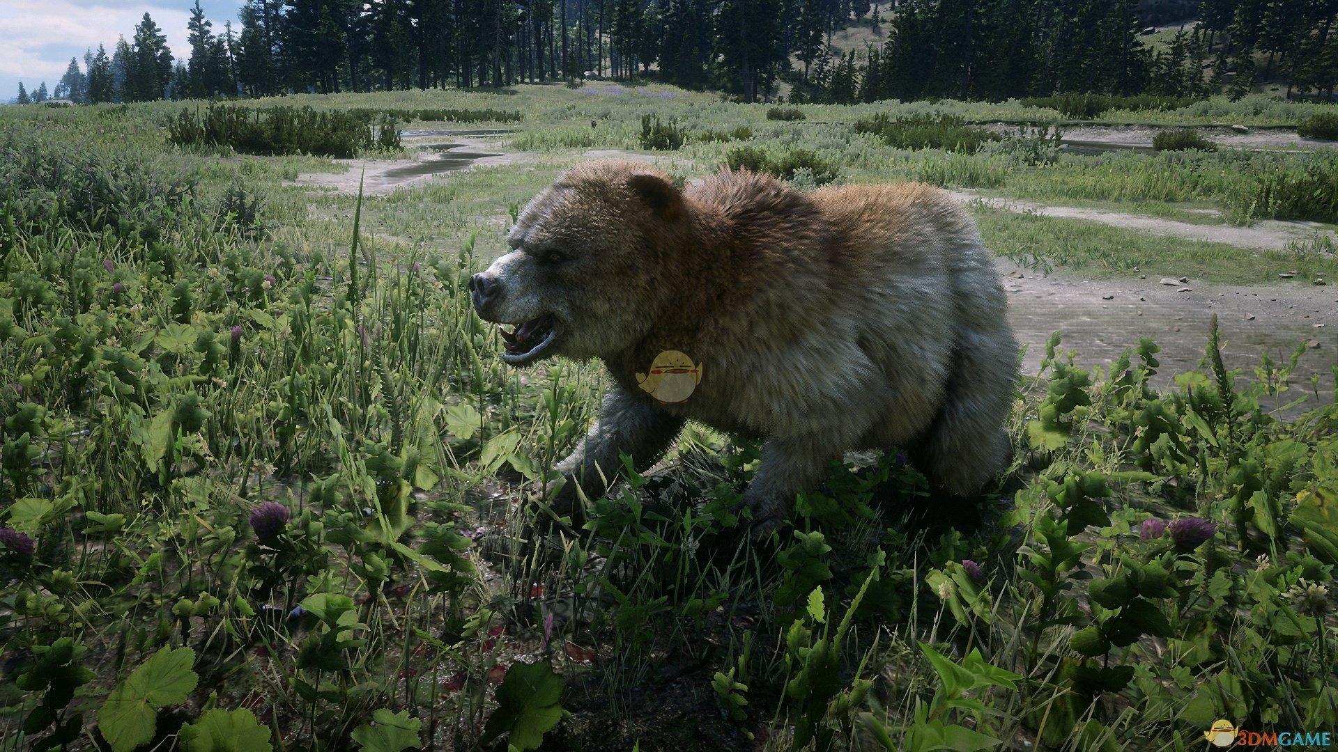 《荒野大镖客2》传说脊背灵熊及其服装外观一览
