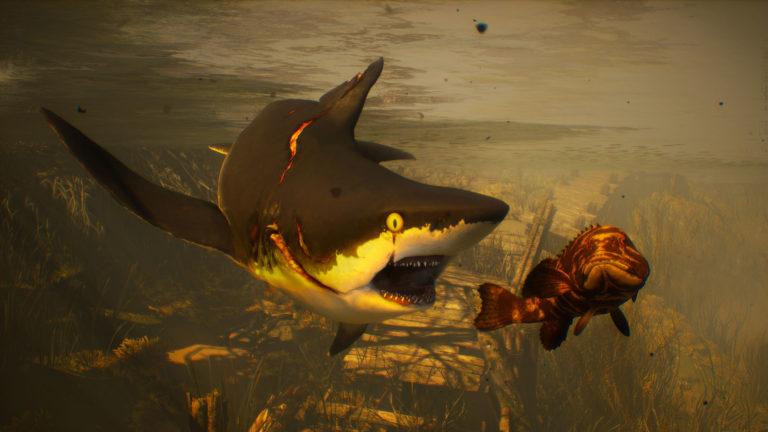 《食人鲨》PS4版存档无法继承到PS5版
