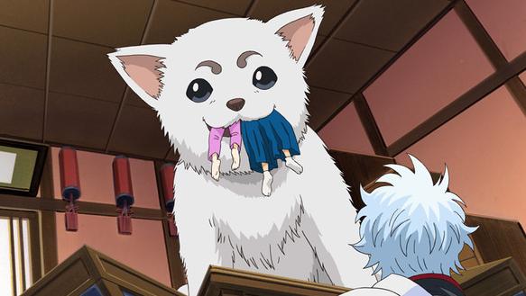犬夜叉只排第2位!11月1日岛国《犬之日》动画名犬评选