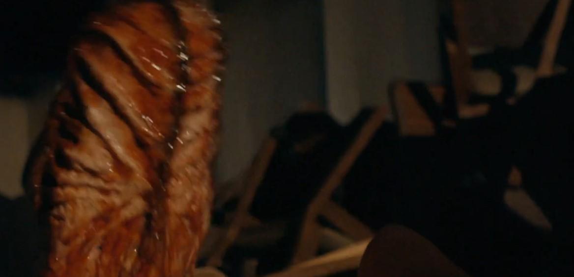 超重口恐怖片「腐烂」宣布预报 本日在亚马逊播出
