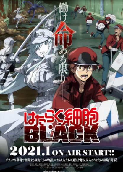 TV动画《工作细胞 BLACK》最新预告公开 2021年1月9日开播