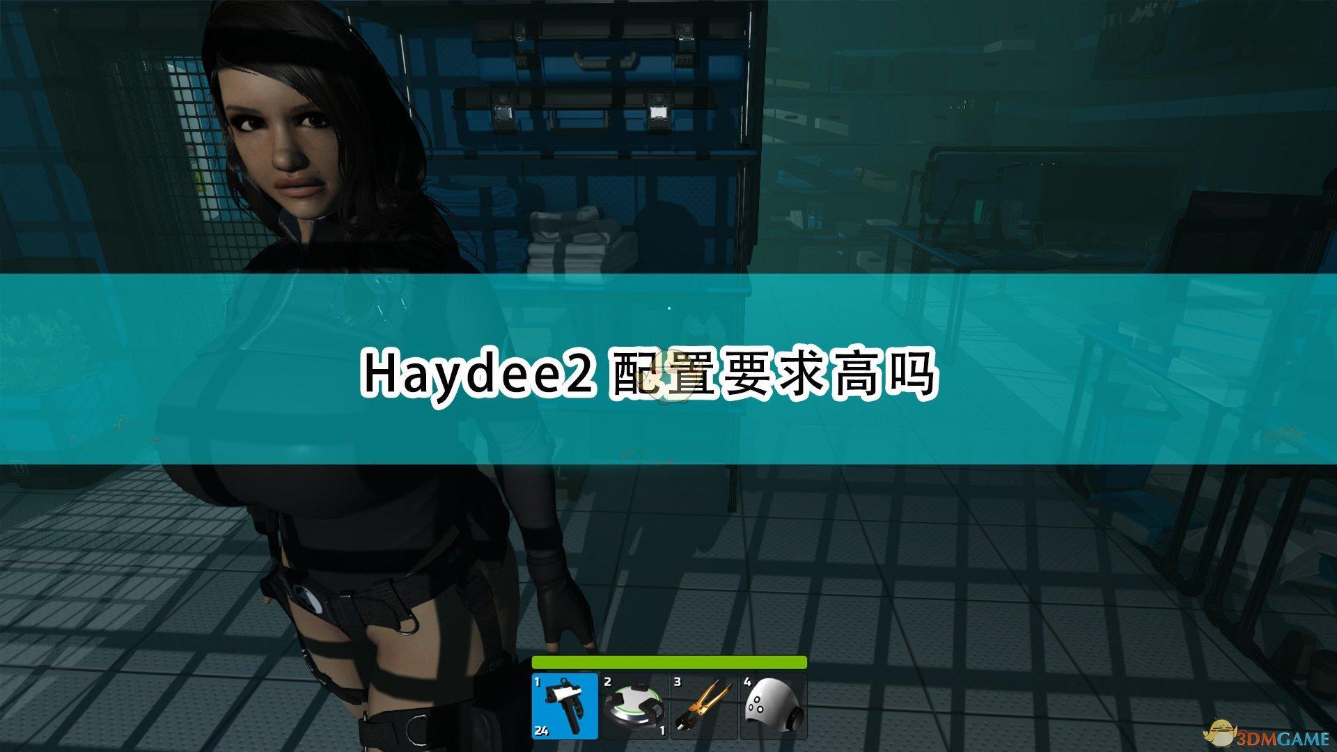 《Haydee 2》配置要求一览表
