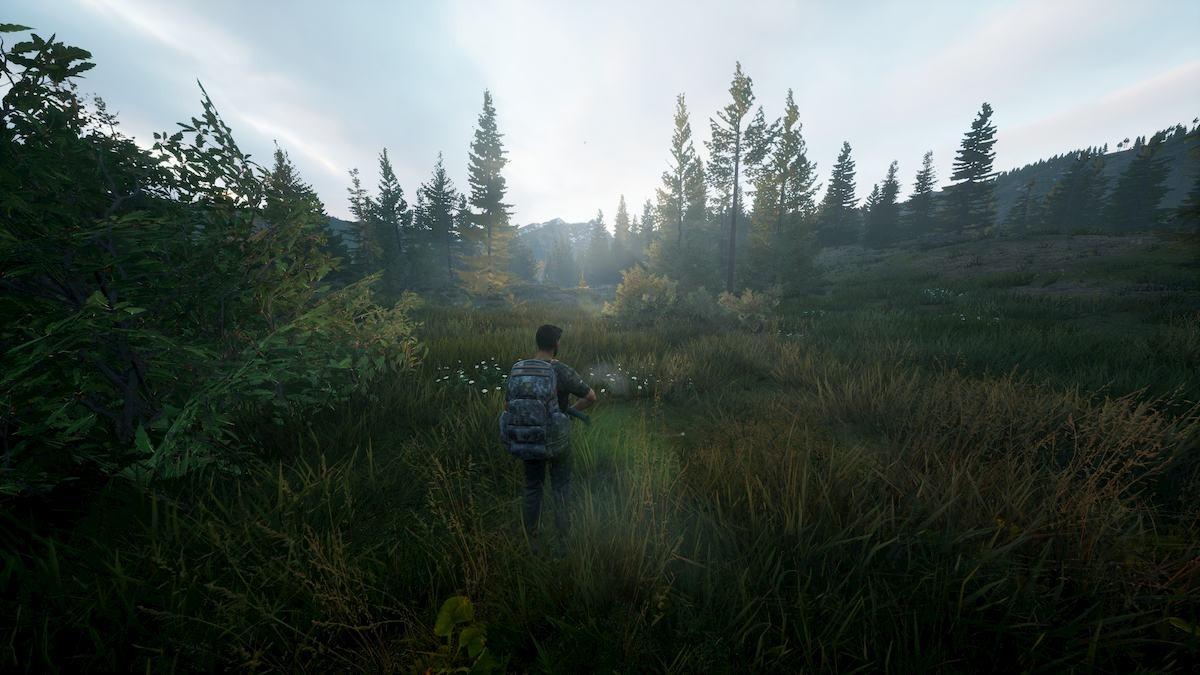《模拟狩猎2》将在2021年登陆PS5/XSX/XSS 新升级包括若干修复和技术改进