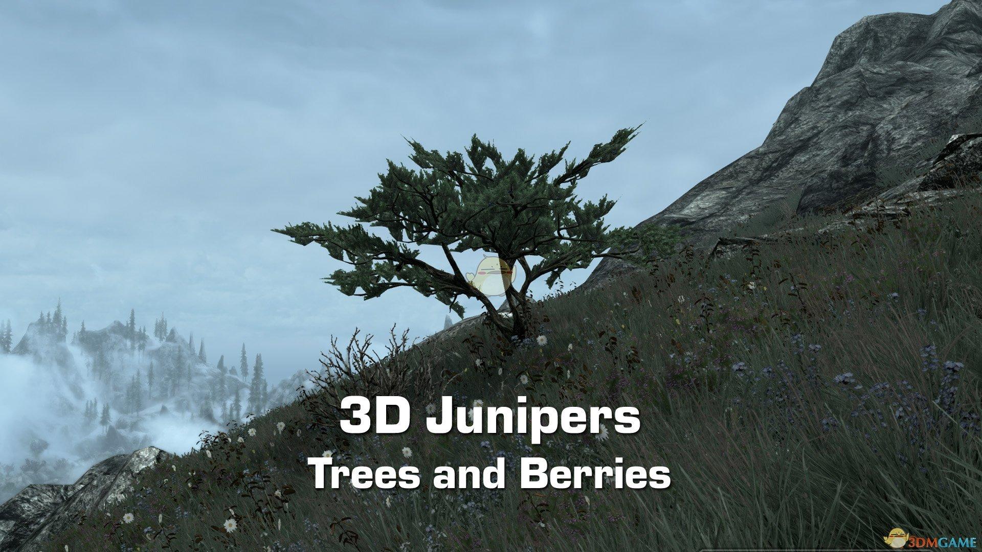 《上古卷轴5:天际》3D的树木和浆果MOD