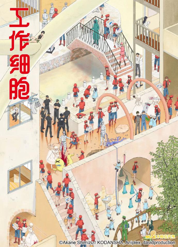 央视公开中配版《工作细胞》第二弹预告 2月13日播出