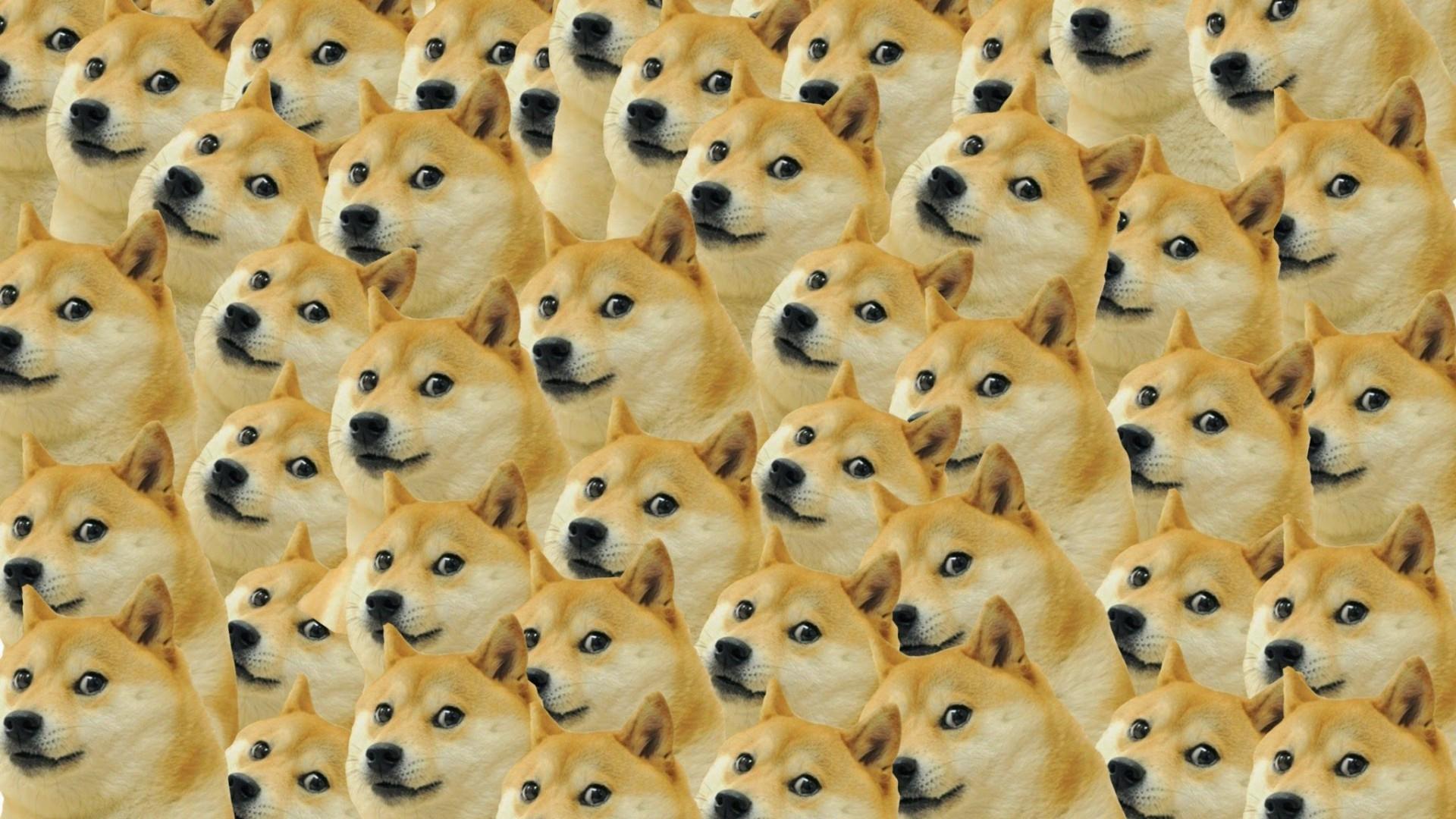 """腾讯申请注册""""狗头""""表情包商标 涉及食品洁具广告等"""