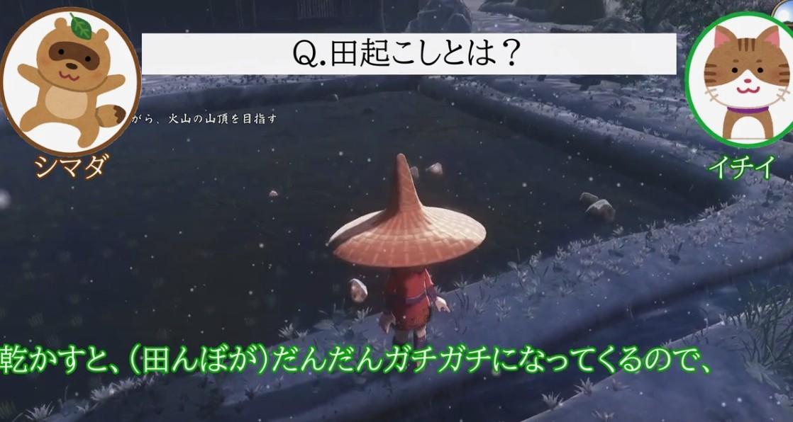 日本农家玩《天穗之咲稻姬》详尽对比真假种稻米