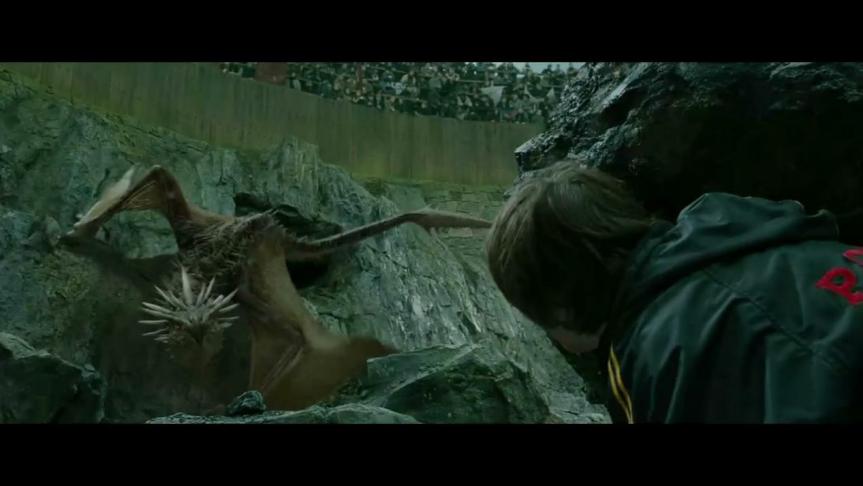 为什么每条恶龙都要傻乎乎地把财宝藏到地下城中?