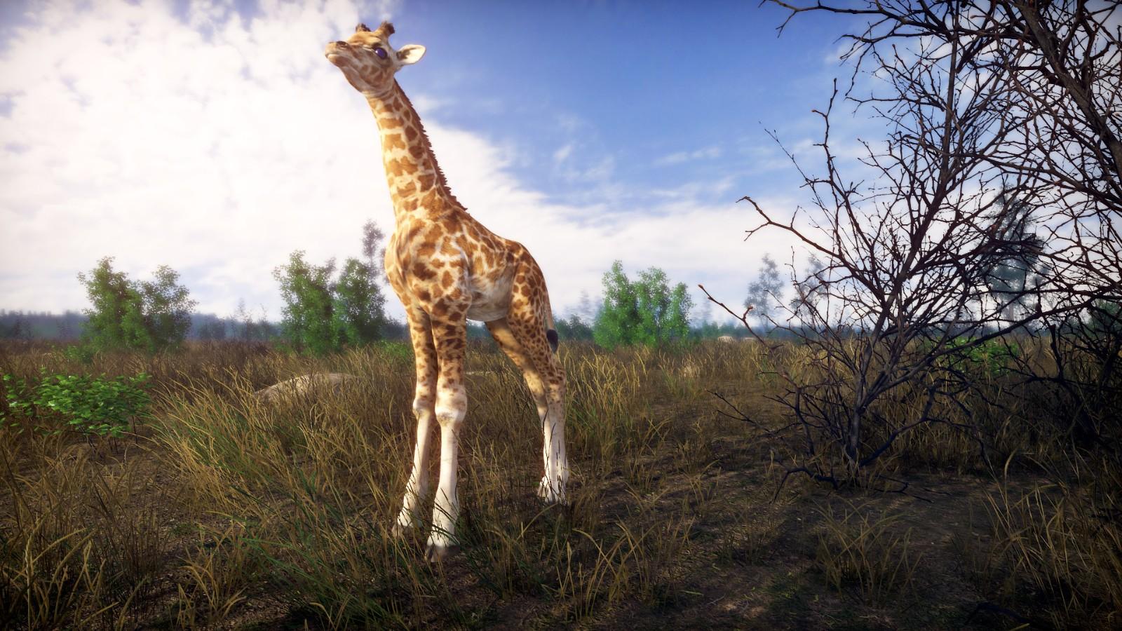 开放世界生存游戏《疾如闪电》上架Steam 支持简中