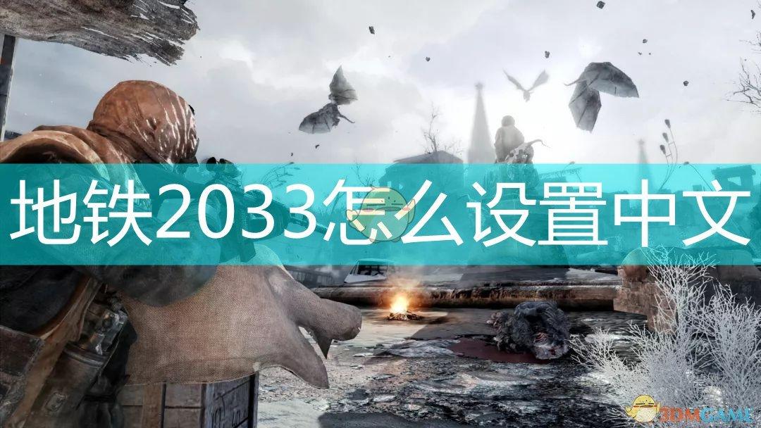 地铁2033怎么设置中文
