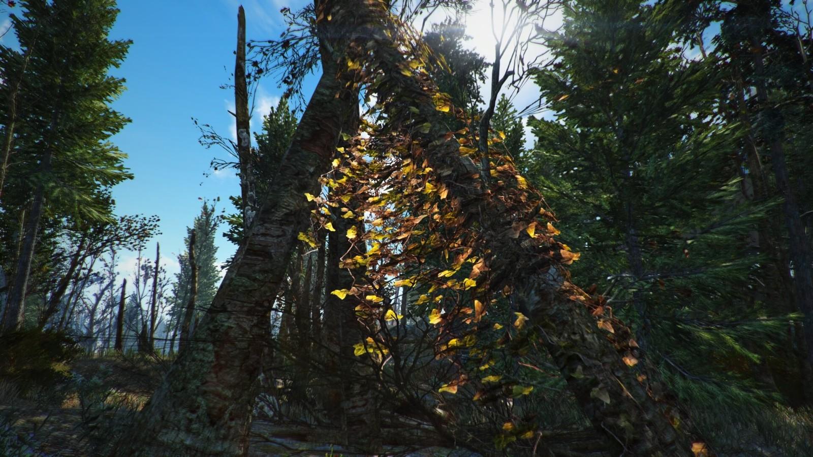 《辐射4》高清树木材质包 为波士顿添加上万棵高清树