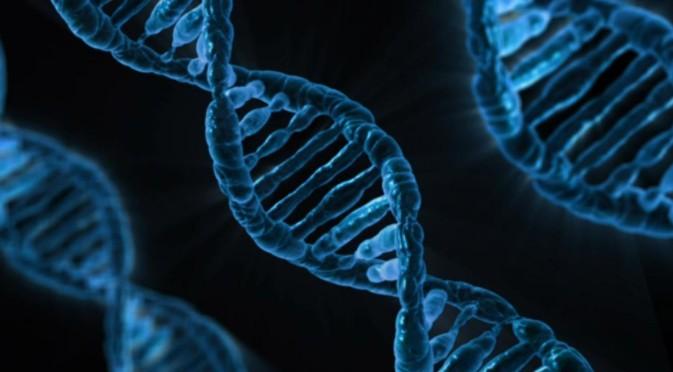 最新《科学》杂志:困扰科学界60年DNA复制之谜被解开