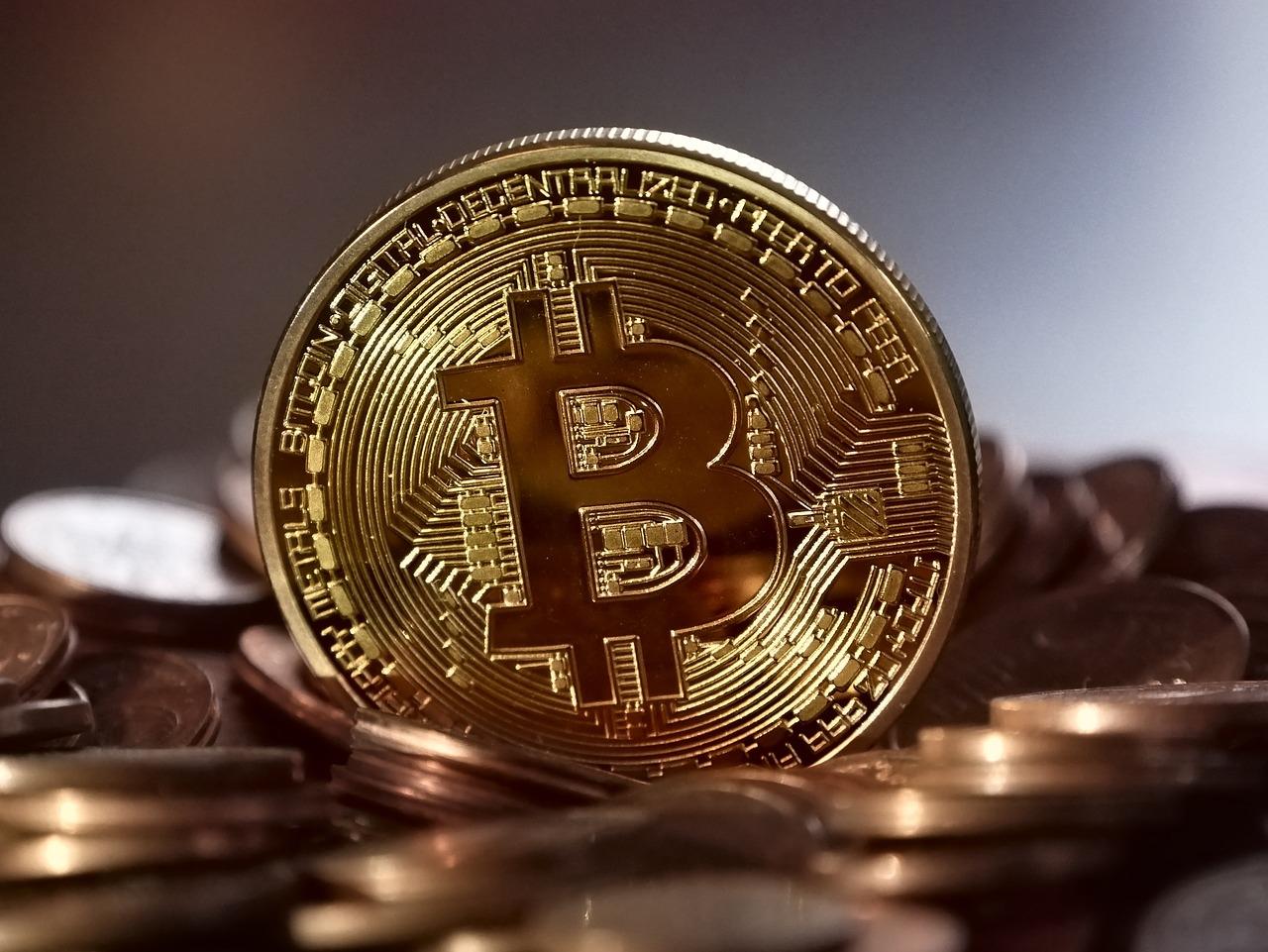 这个恶搞加密货币一天上涨50%:今年已暴涨100倍