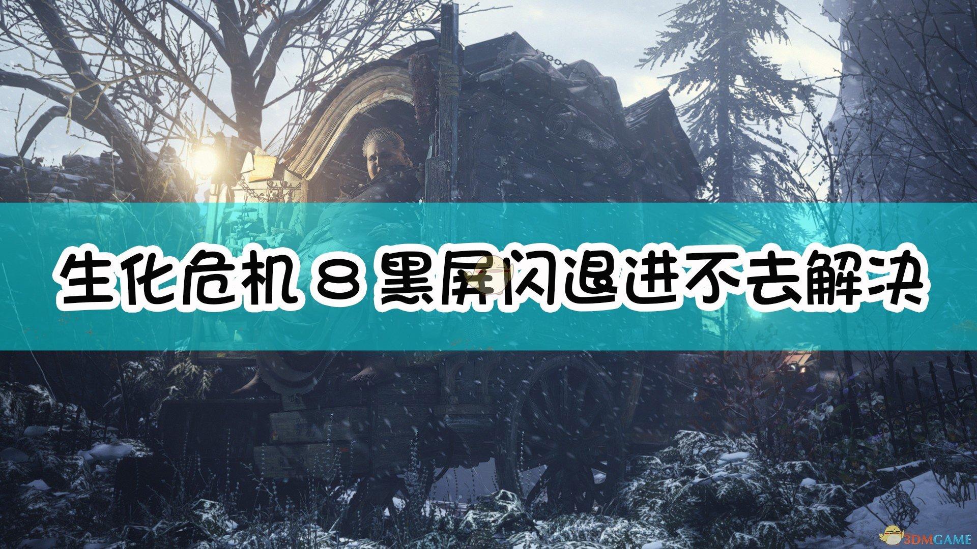《生化危机8:村庄》黑屏闪退进不去解决方法介绍