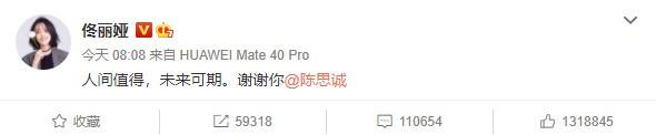 导演陈思成和演员佟丽娅宣布离婚