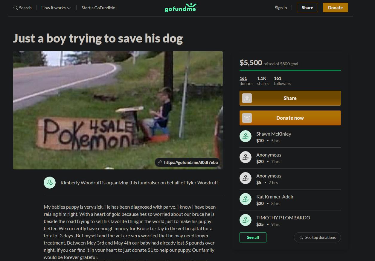 小男孩卖宝可梦卡救爱犬 感动众人众筹获5千美金还收到宝可梦员工神秘礼物