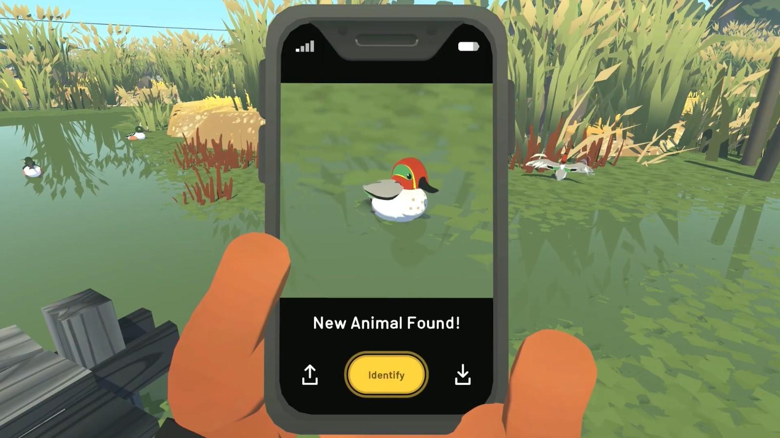 特别好评《阿尔芭:野生动物冒险》6月9日登陆主机平台