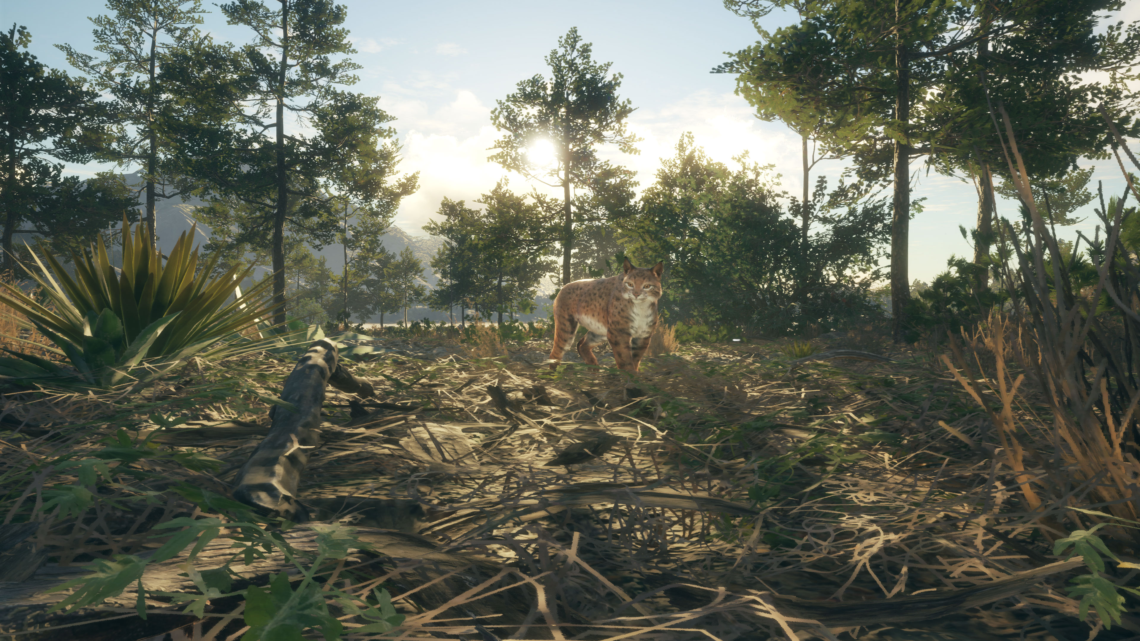 《猎人:荒野的召唤》的全新DLC即将上线 沙漠环境下狩猎