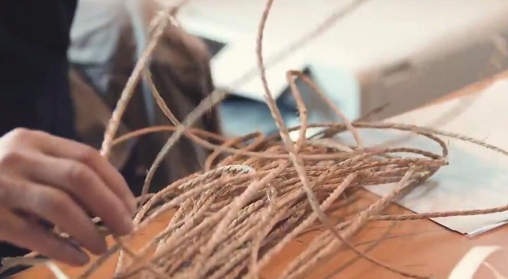 《宝可梦》全新策划宣传片 主题将是宝可梦X自然X冒险