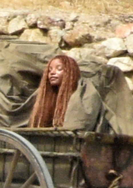 黑人鱼和棕雪公主,会是迪士尼真人电影的出路吗?