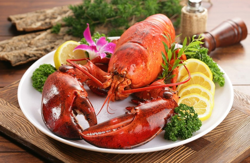 英国拟禁止煮食龙虾螃蟹等活物:它们也有痛感和知觉