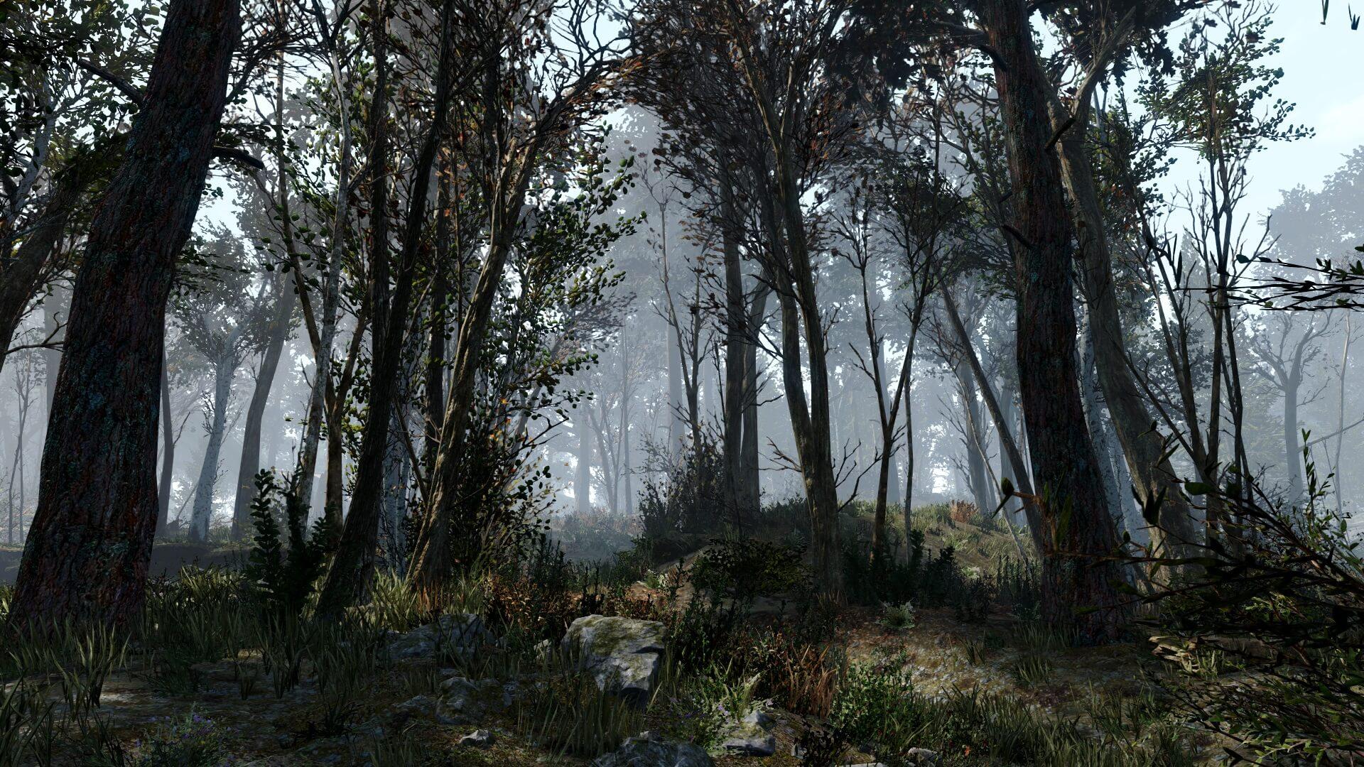 绿意盎然 《辐射4》森林MOD为游戏添加18000棵树木