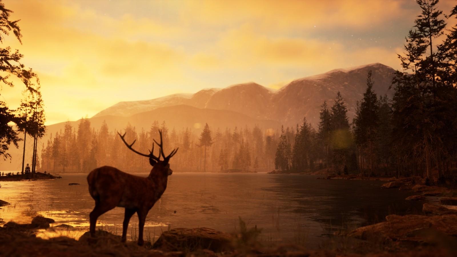 《摄影模拟器》现已上架Steam 实机宣传片公开