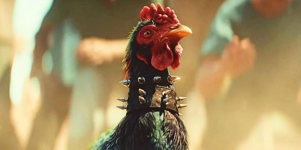 动物保护组织谴责《孤岛惊魂6》斗鸡游戏过于残忍