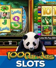 IGT游戏机:100熊猫攻略_IGT游戏机:100熊猫心到攻略5暖暖11s奇迹