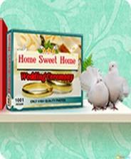 《1001拼图:甜蜜的家-婚礼》英文免安装版