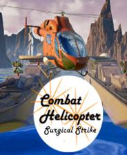 《战斗直升机:外科打击》英文免安装版